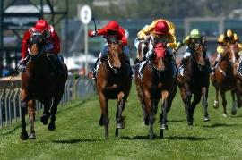 trixies horse racing