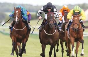 horse-racing-multiple